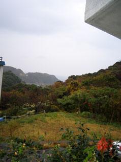 下田市柿崎【土地・山林】