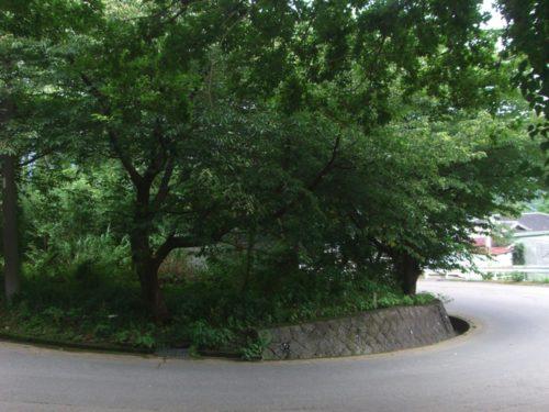 <片瀬白田・住宅別荘用地>閑静で緑豊かな住環境!海近く!【売・土地】