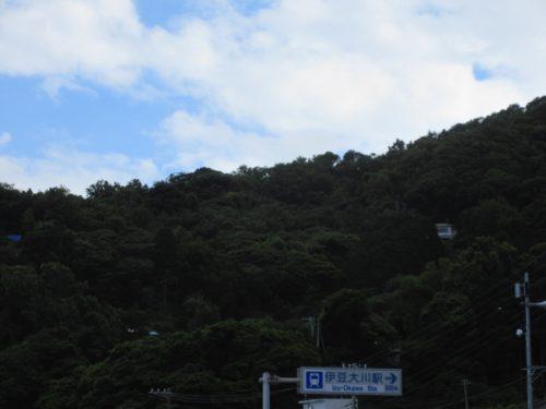 <伊豆大川>事業用の広大な山林10,577坪!相模灘一望【売・土地】